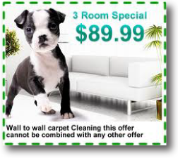 Image Result For Carpet Cleaning Wilmington Nc