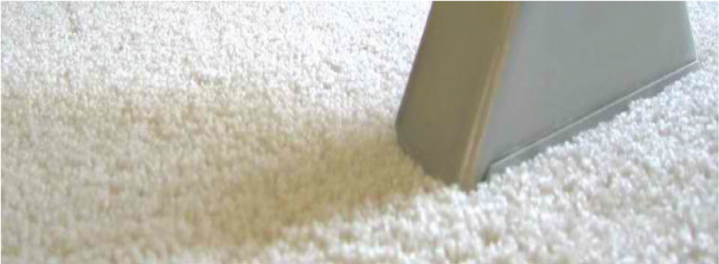 Carpet Cleaning Wilmington Nc Footer Wilmington Carpet